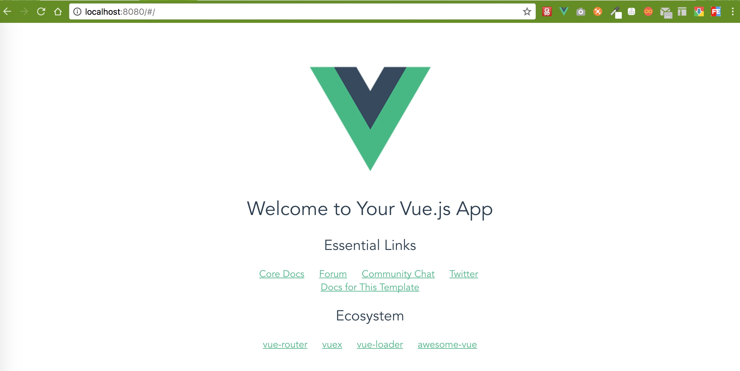 vue project view